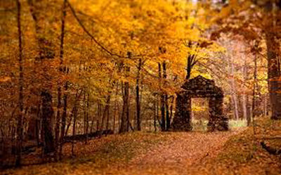 Stunning Stone Arbor in the woods in fall.