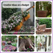 Creative ideas on a budget
