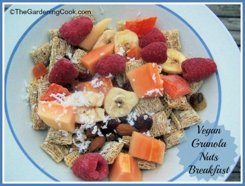 Vegan Granola Nuts Breakfast Recipes
