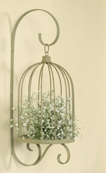 birdage3