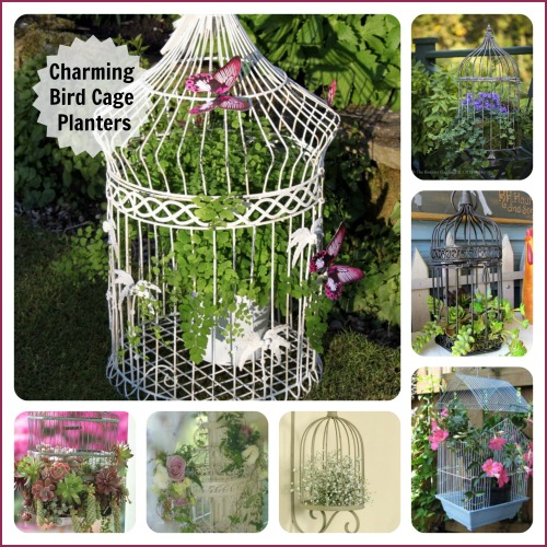 Charming Bird Cage Planters