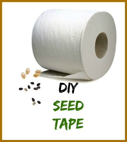 Seed Tape - DIY with Toilet Paper - Easy and inexpensive