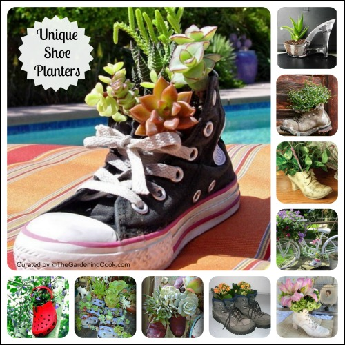 Great selection of unique shoe planters