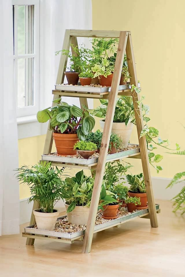 Vertical ladder plant stand