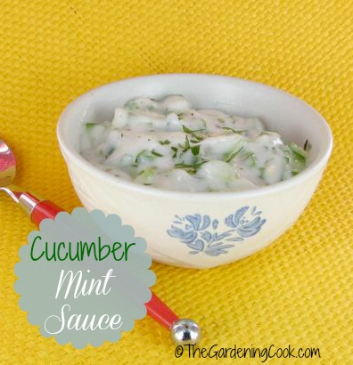 This cucumber mint sauce is the perfect condiment for Indian foods.