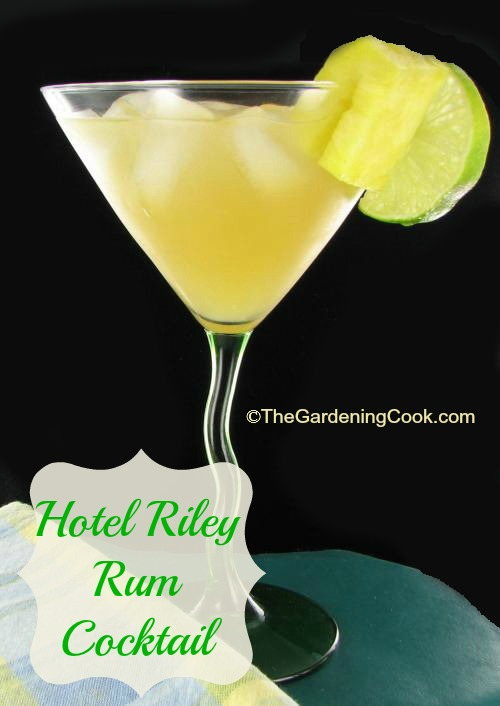Hotel Riley Rum Cocktail