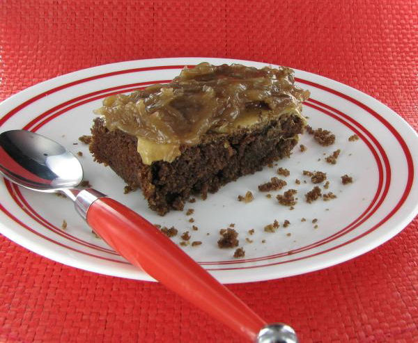 Peanut Butter Fudge Cake with Coconut Pecan Frosting - The Gardening ...