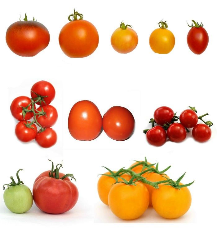 Check your seed package to see if the tomatoes are grown for sweetness or tartness.