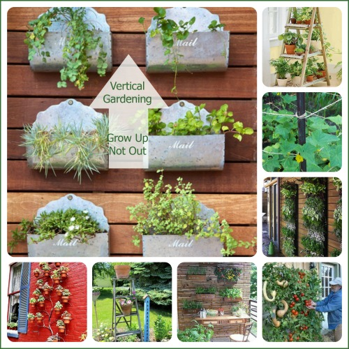 Vertical Gardening Ideas frame a patio space with a beautiful hanging garden Vertical Gardening Ideas