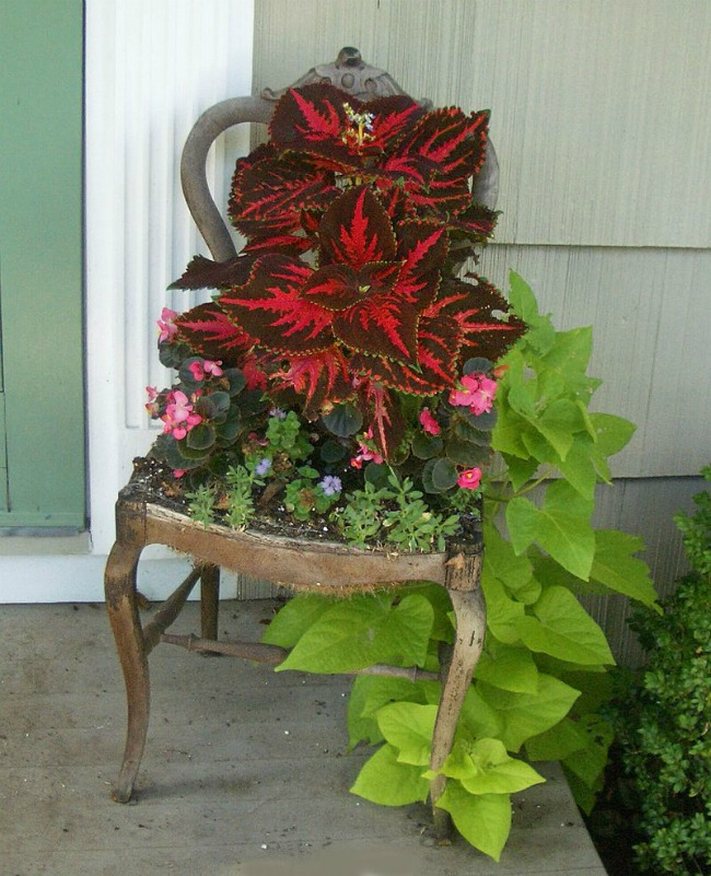 Chair planter from The T Cozy