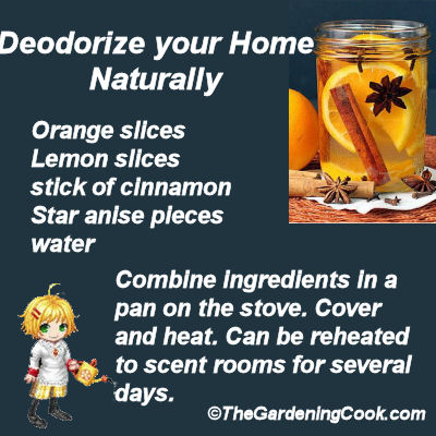 DIY room deodorizer - Orange Lemon Cinnamon Star Anise