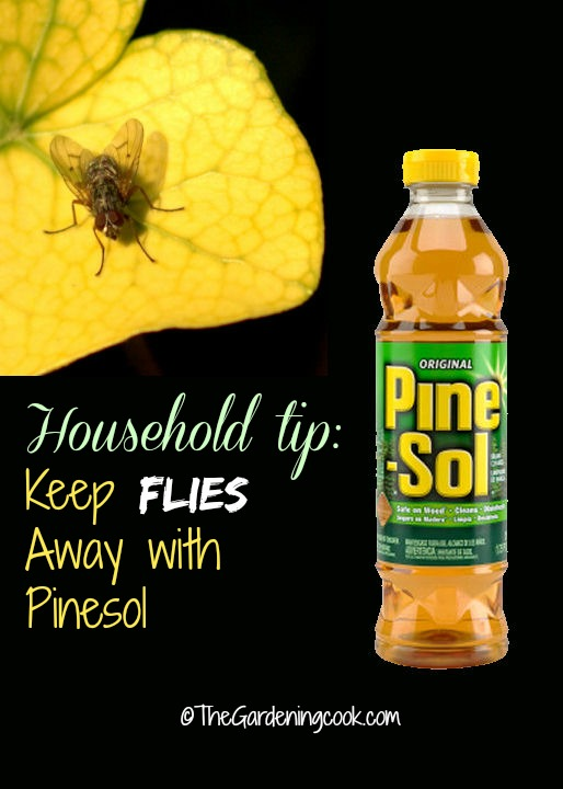 Keep flies away with Pine-Sol