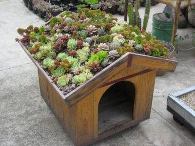 Ένα σπιτάκι με roof garden..