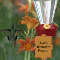 Round up of creative hummingbird feeders