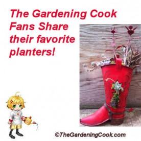 Gardening Cook Fans - favorite planters