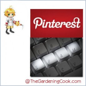 Pinterest to crack down on spam
