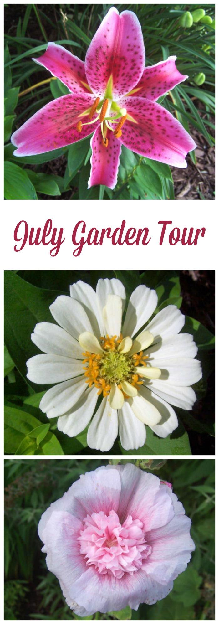 July Garden Tour featuring perennials and annuals for a hot summer garden.