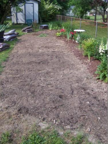 Test garden in May