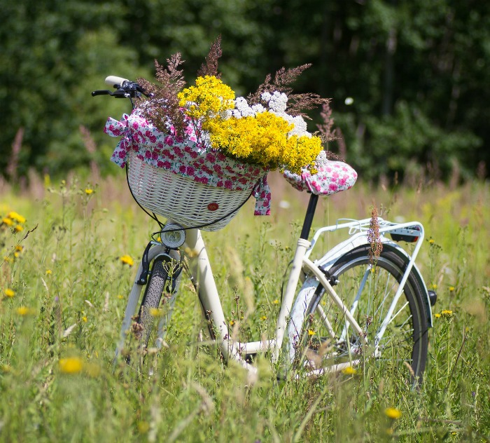 Bicycle Planter with wild flowers