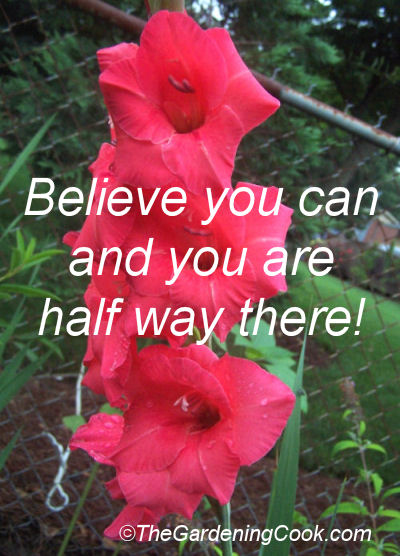 Believe you can and you are half way there