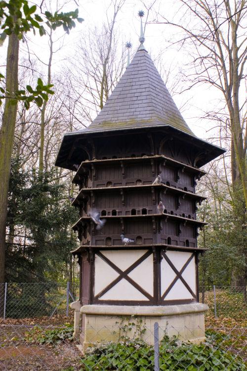 Huge bird house