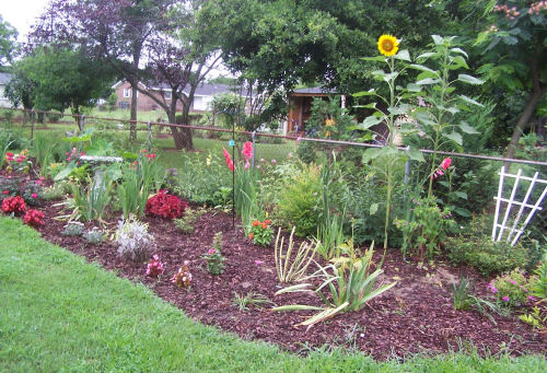 Full garden planted for party