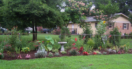 A garden transformation in progress
