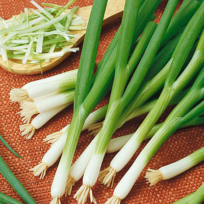 Green onions mature in 60 - 70 days. Still time to plant for fall