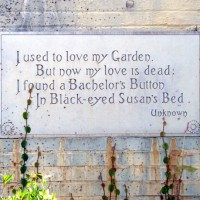 Collection of cute Garden Signs