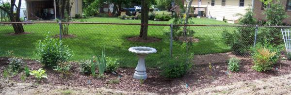Test garden last year