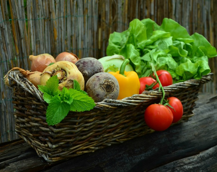 There are lots of vegetables that you can still plant for a fall garden
