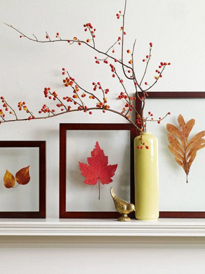 Framed leaf pressings