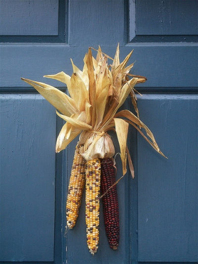 Indian Corn Swag on a blue door. Great color combo!