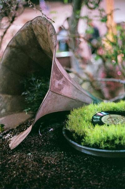 Musical Planters Creative Gardening Ideas The