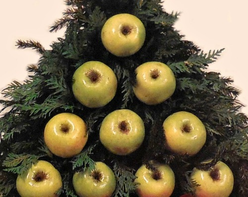 Tree shaped apples