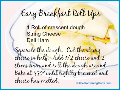 Easy breakfast roll ups - just 3 ingredients