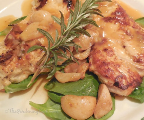 Olive Garden Copycat recipe: Chicken with roasted garlic, mushrooms and rosemary on wilted spinach