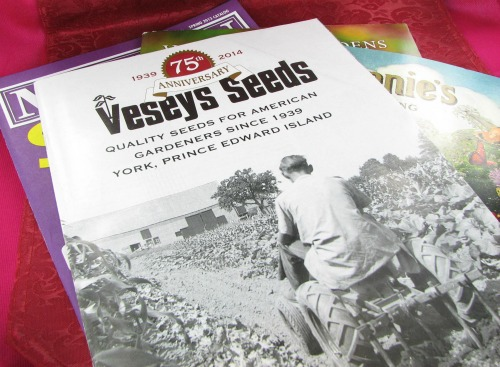 Seed catalogues for spring