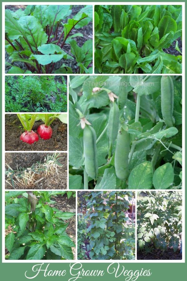 Vegetables for 2014