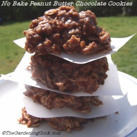No Bake peanut butter chocolate cookie