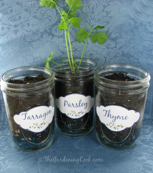Herb Labels for Mason Jars