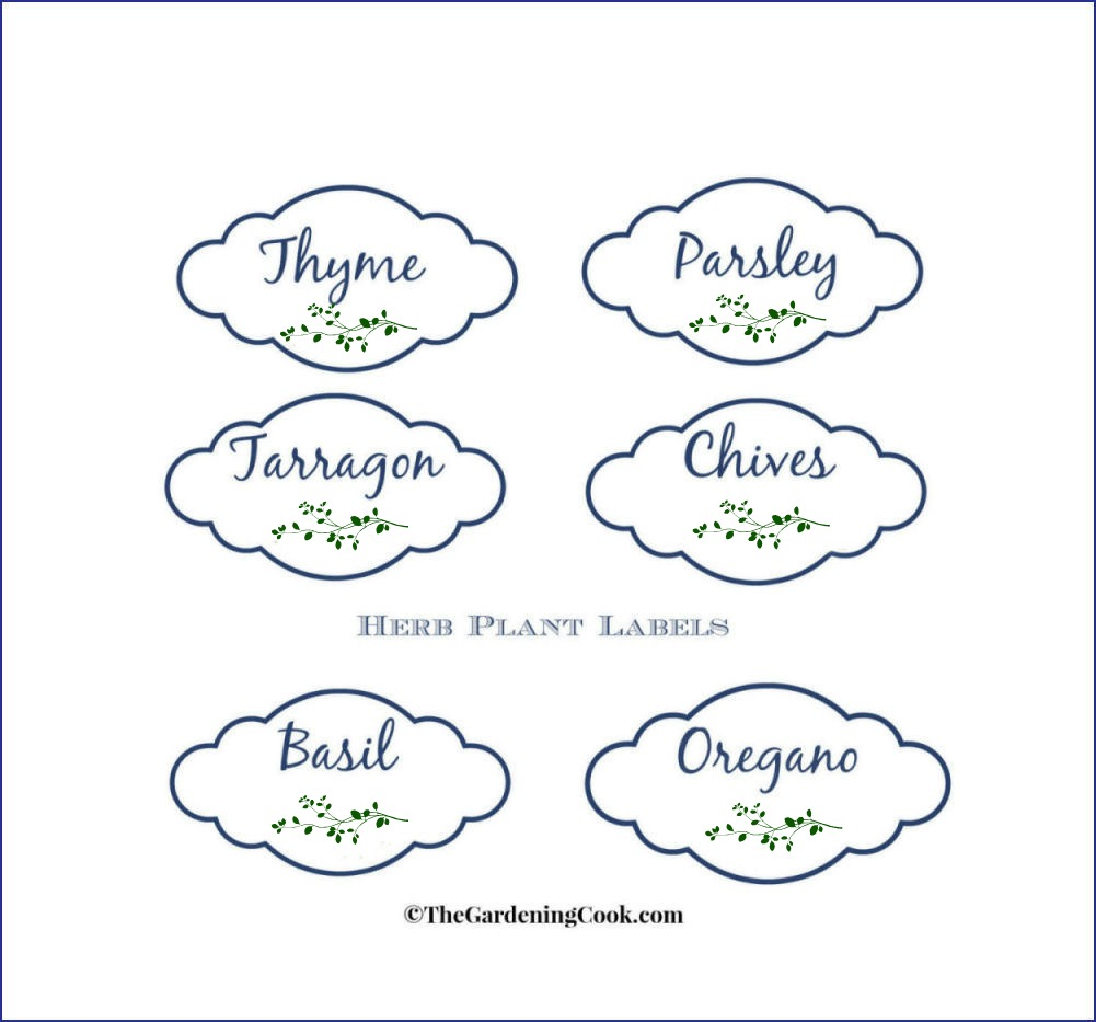 Free Printable Labels for Herb Plants