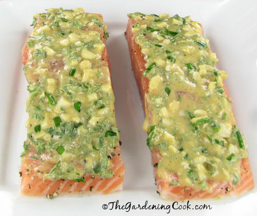 Herbed Salmon with Dijon Mustard - The Gardening Cook