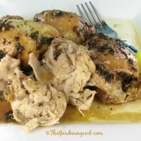 savory Island chicken