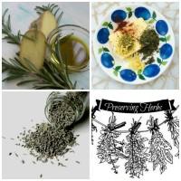 Preserving fresh herbs
