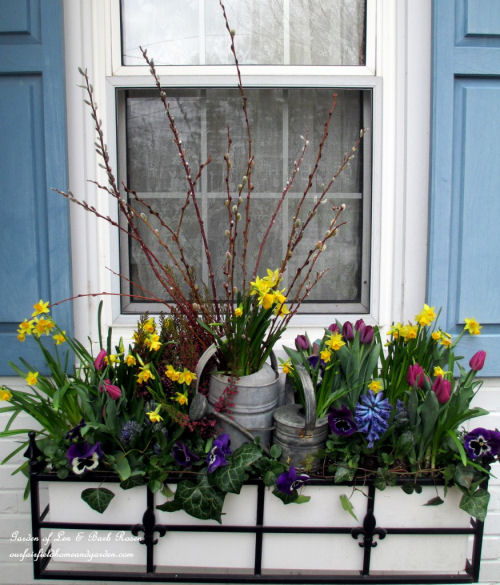 Watering Can in a window box planter