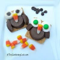 Halloween Owl Cookie Treats