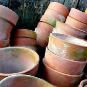 Cleaning Clay Pots is a job that is best done in winter