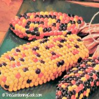 This Indian Corn Cake centerpiece is the perfect dessert and decoration for your Thanksgiving table. Imagine how much fun the kids will have making and eating it! thegardeningcook.com