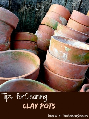 Tips for cleaning clay pots
